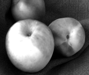 Gray Scale Apple and Peach